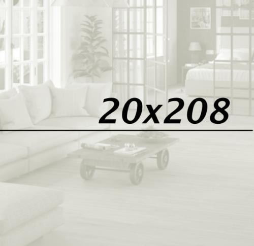 20x208