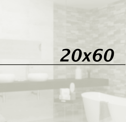 20x60